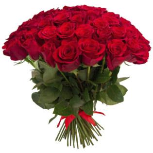 Розы Эквадор